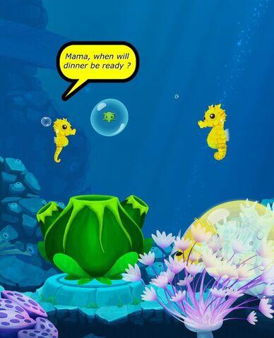 File:SeahorseFoodPot.jpg