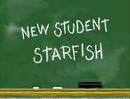 New Student Starfish
