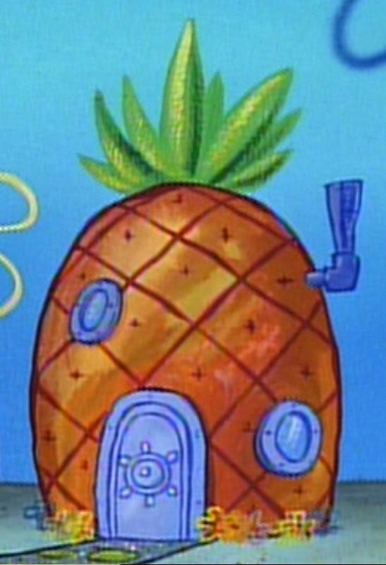 Image - SpongeBob's pineapple house in Season 1-2.png ...