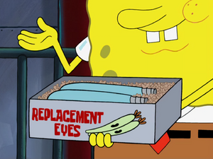 Replacement Eyes