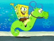My Pretty Seahorse 13