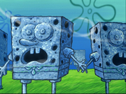 SpongeHenge location-1