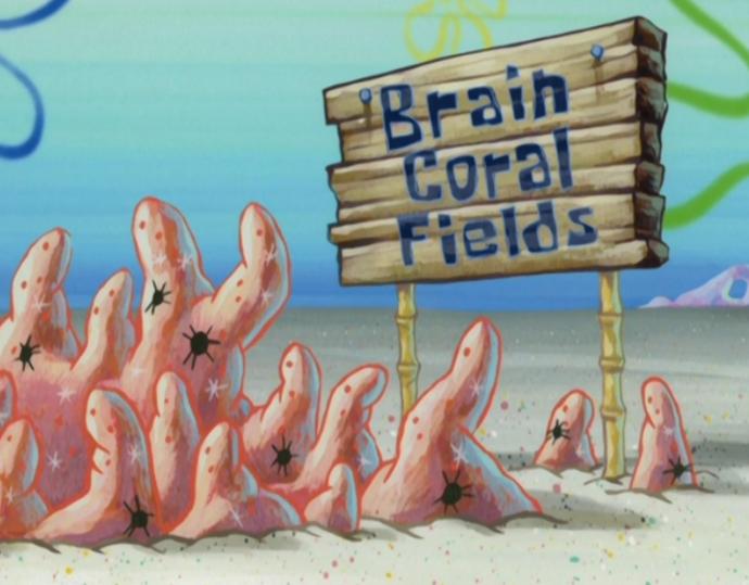 File:Brain.png