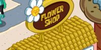 Flower Shop/gallery