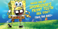 Which One of SpongeBob's Front Teeth Are You?