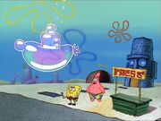 Bubblestand 060