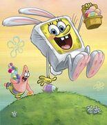 Show-bunny-contest