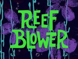 Galeri Reef Blower