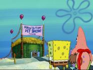 Patrick in Grooming Gary-21