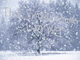 The-Snow-Flower-Love 1