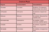 Creature Phyla