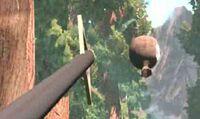 Archery flying high