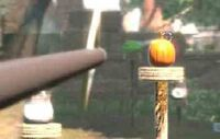 Archery postcity pumpkin