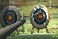 Archery standardtargets
