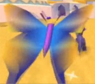 File:Butterfly1.jpg