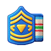 File:Badge Military Level 22.png
