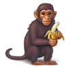 File:Contract Primate Tour.png