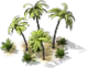 Decoration Palm Trees