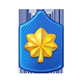 Badge Military Level 55