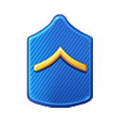 Badge Military Level 3