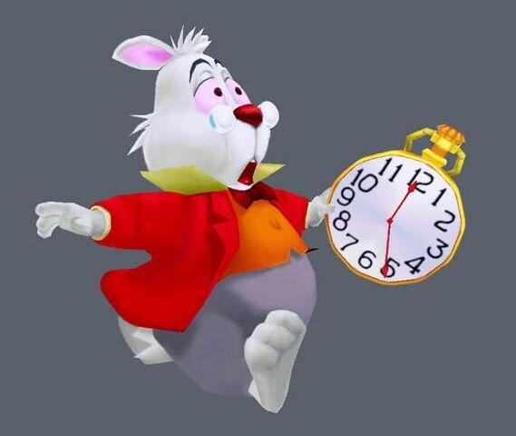 File:White rabbit.jpg
