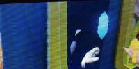 Sonic Train Glitch