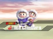 IceClimbers-Victory3-SSBB