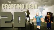 Crafting Dead 20