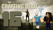 Crafting Dead 16