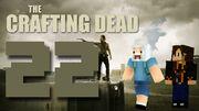 Crafting Dead 22