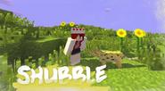 UHshe - Shubble
