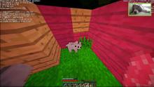 Wolf baby!2