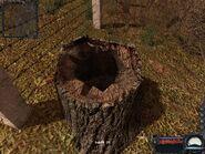 TreeStumpNearFenceStash