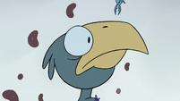 S2E2 Eagle chick stares at Ludo