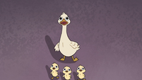S2E39 Duck and ducklings looking up at Marco