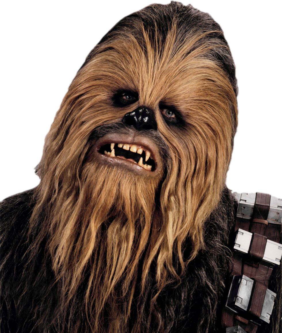 chewbacca star wars canon wiki fandom powered by wikia. Black Bedroom Furniture Sets. Home Design Ideas