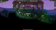 Mushroomplace