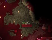 Bone block underground