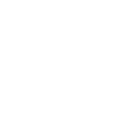 File:Developer.png