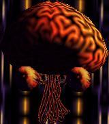 Andross brain