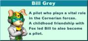 Bill Grey