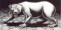 Volturnian Cave Bear