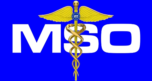 File:Mso logo.jpg