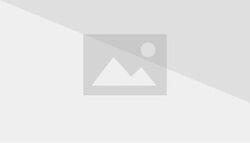 Purple plant planet