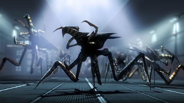 File:Arachnids by onefirewarrior.jpeg