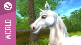 Star Stable World - Selle Français