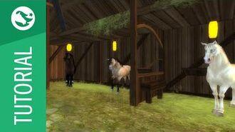 Star Stable Tutorial - Horses