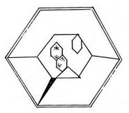 Tholian cell