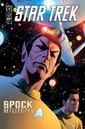 Spock Reflections 2RI