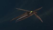 File:Cetratus class.jpg